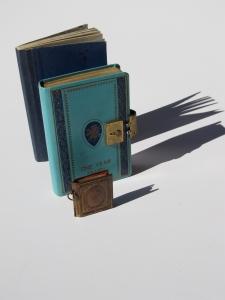 Diaries 1969-1970  (Martha Andrews Donovan)