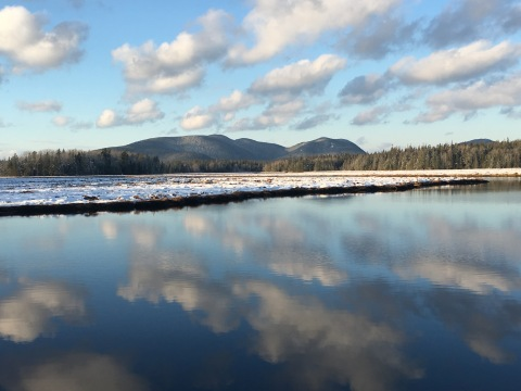 Bass Harbor Marsh Dec. 2016